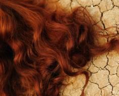 Red Auburn Henna For Hair Kit Organic Henna Muse